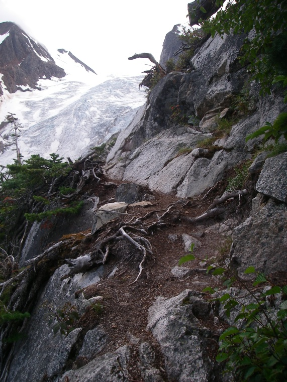 Thursday: Cool trail....just don't trip or slip!