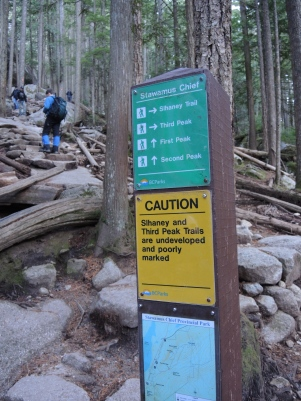And a few route choices to be made..... On this sign the arrows pointing up are very appropriate.