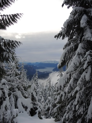 The only viewpoint on the trail. Looking south over Squamish and the Stawamus Chief (the location of our annual Investiture Ceremonies).